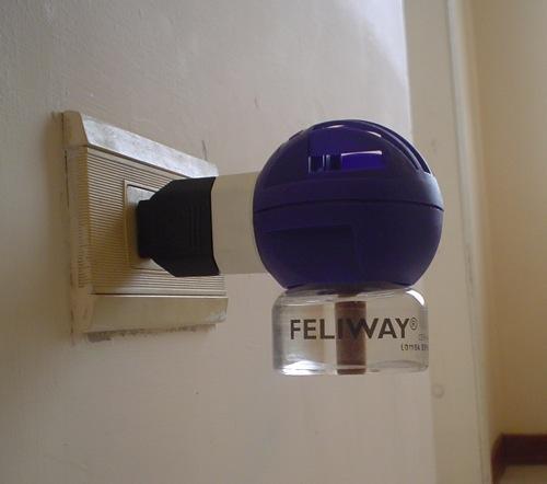 ¿Feliway funciona para gatos?