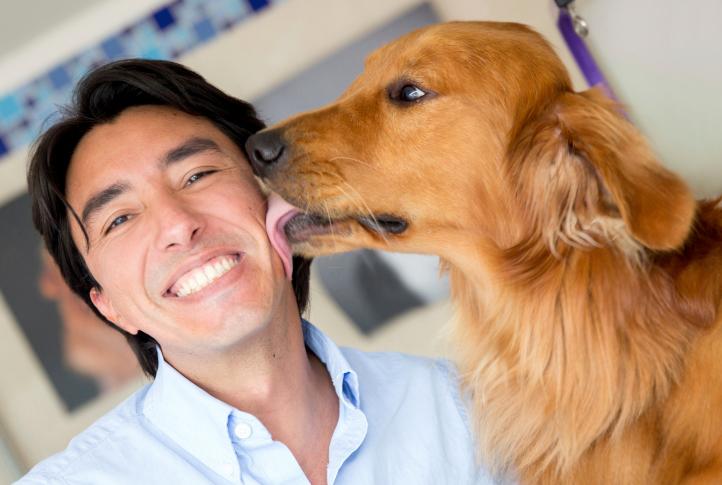 ¿Puedo dejar que mi perro me bese?