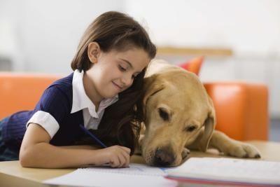 Los perros de rescate y los niños pueden mezclarse: cinco consejos para crear vínculos afectivos