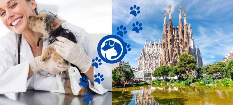 Veterinarios urgencias en Barcelona