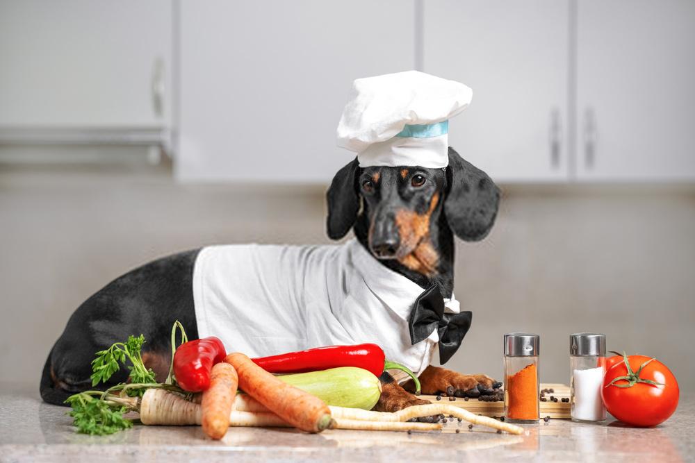 El mejor consejo que podría obtener sobre ¿Pueden los perros comer tomates?