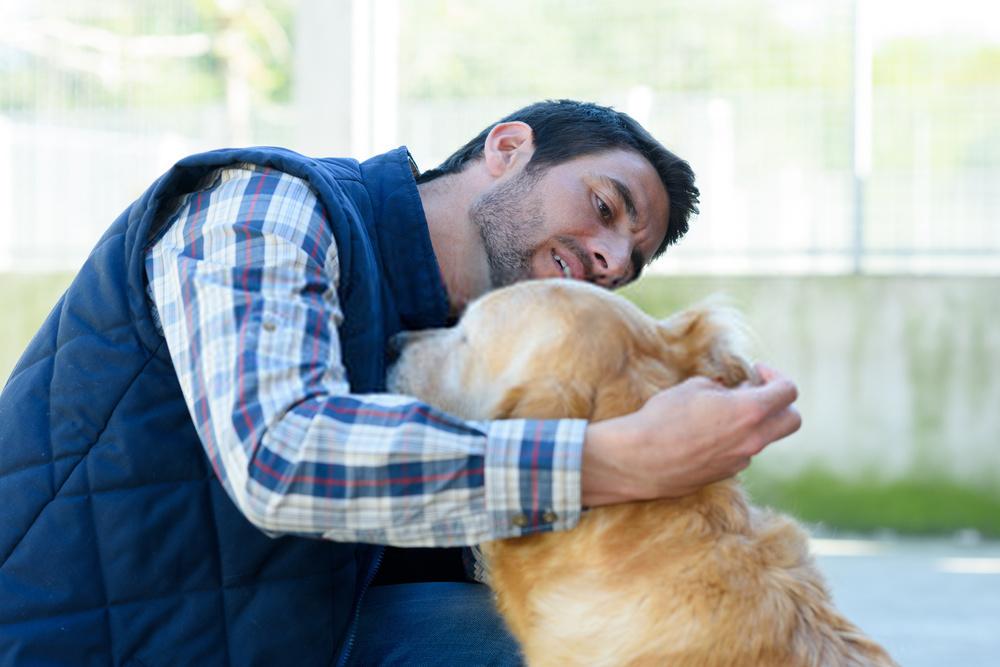 Tratamiento de la infección del oído del perro: diagnóstico natural y mejor para la infección